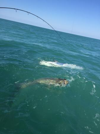 Boca Grande, FL: photo0.jpg
