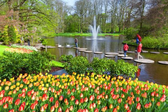 Amsterdam Taxi Online: Keukenhof Flower Garden Near Amsterdam In Lisse 25  Min From Amsterdam
