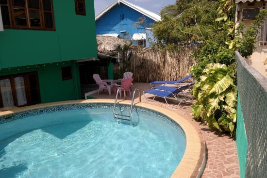 Iguana Villa & Appartementen Photo
