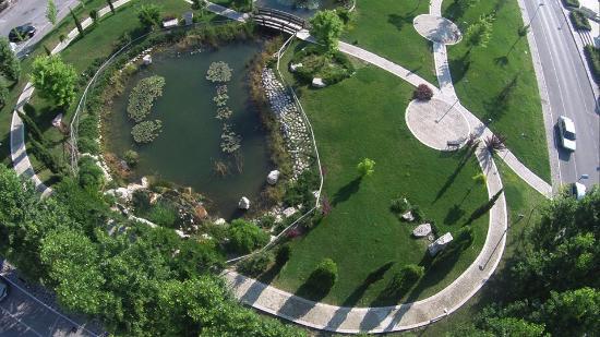 Hotel Miramare: Parco delle ninfee