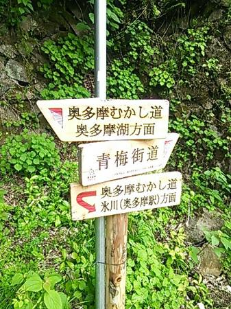 Okutama Mukashimichi: DSC_0927_large.jpg