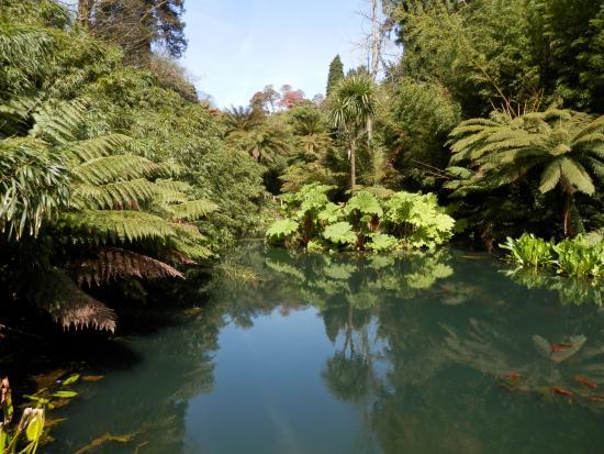 St Austell, UK: Helligans Jungle Area