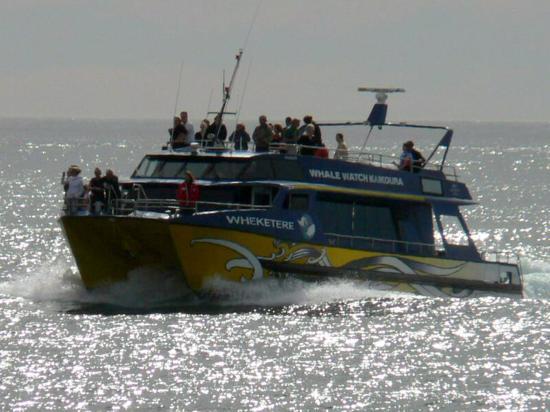 Kaikoura, Nueva Zelanda: on était plusieurs bateaux et ils s'informent via la vhf