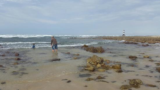 Cape Recife Nature Reserve : 20160508_142811_large.jpg