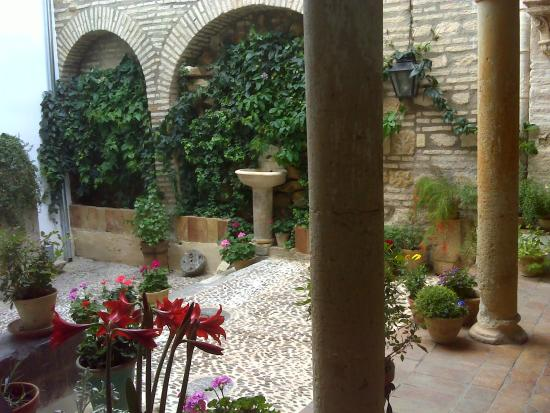 Uno de los patios interiores picture of casa de las - Patios interiores ...