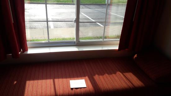 Huron, OH: Additional bed. Next to window is cool...