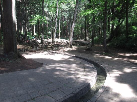 Ryugasaki Forest Park