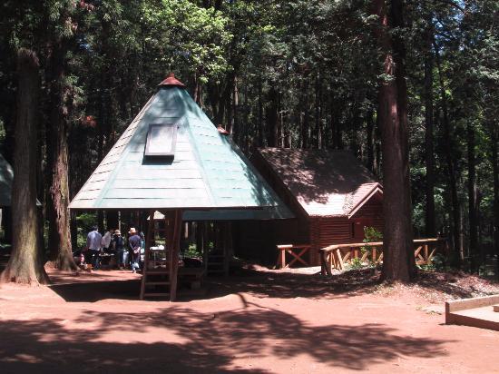 Ryugasaki Forest Park: 森林公園 キャビン