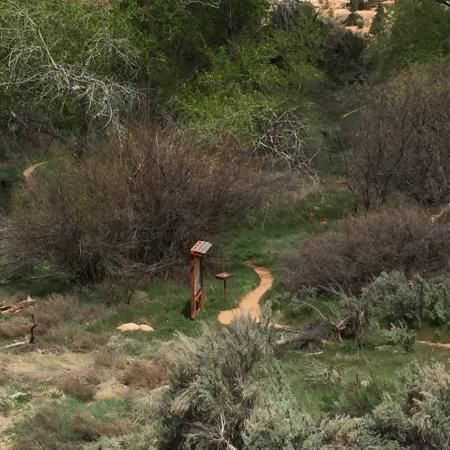 Mule Canyon Ruins: photo0.jpg
