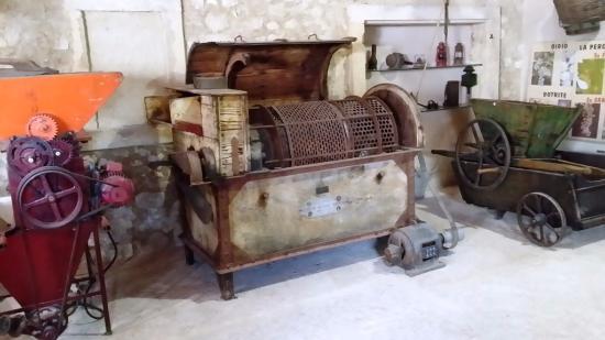 Museo del Vino: Storia della pigiatura