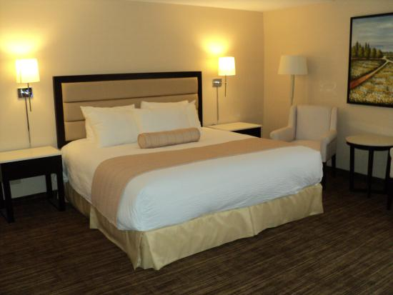 Prince George, Kanada: 1 King Bed Room