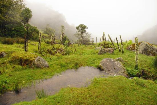 Bajos del Toro, Costa Rica: die Landschaft macht dem Nebelwald alle Ehre