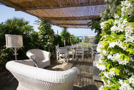 Relax picture of soleado bagno giardino marina di pietrasanta tripadvisor - Bagno italia marina di pietrasanta ...