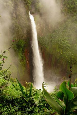 Bajos del Toro, Costa Rica: Catarata Del Toro