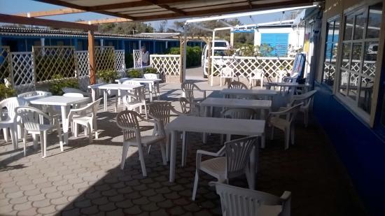Bagno Balena Marina Di Pisa : Mavà bistro marina di pisa ristorante recensioni numero di