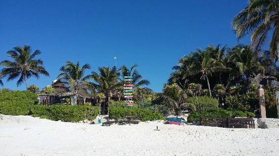 Playa Esperanza: 20160506_084549_large.jpg