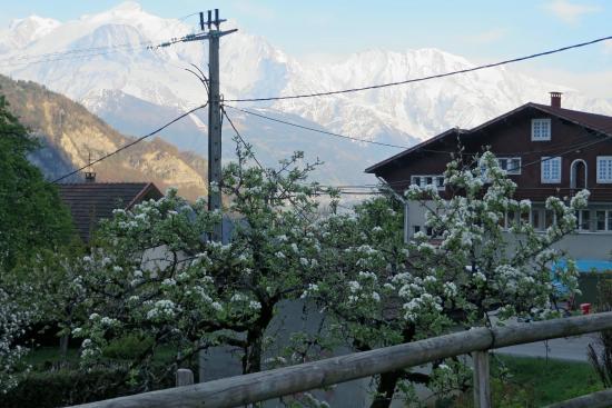 La Ferme d'Emilienne : Mont Blanc