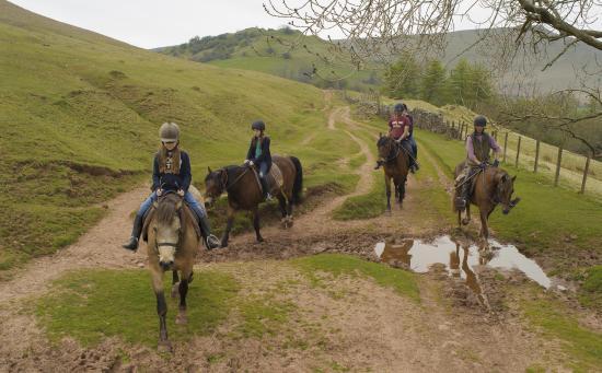 Trans Wales Trails
