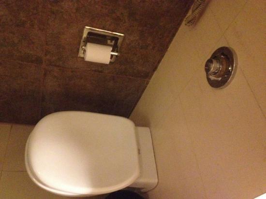 Silver Ferns Hotel: IMG-20160509-WA0009_large.jpg