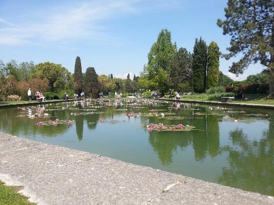 Parco giardino sigurt foto di parco giardino sigurt - Parco giardino sigurta valeggio sul mincio vr ...