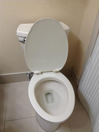 No Toilet Seat Just Lid How Does Housekeeping Miss This - Toilet seat with no lid