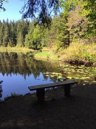 Courtenay, Canadá: photo2.jpg