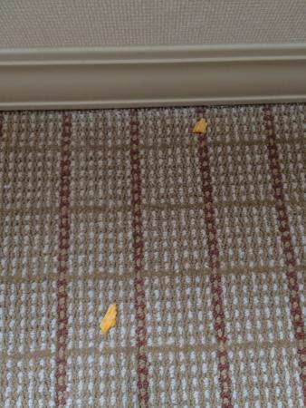 Clayton, MO: Potato chips on floor on check in