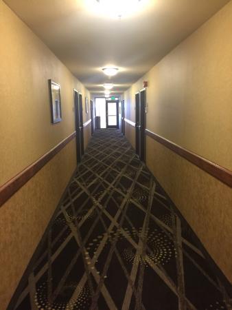 BEST WESTERN PLUS Inn of Hayward: photo0.jpg