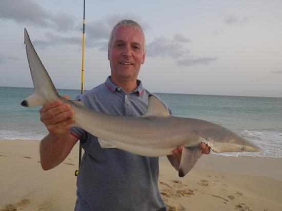 Hotel Riu Touareg Shark Fishing Beach