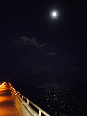 Sunny Isles Beach, Flórida: The pier at night