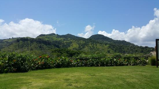 La Costa del Ámbar: Beautiful scenery