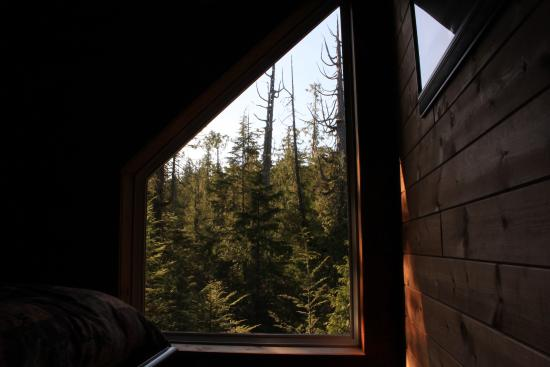 Florencia Bay Hideaway: View from master bedroom in Willowbrae Chalet.
