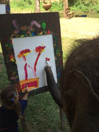 Elephant Life Experience: photo3.jpg