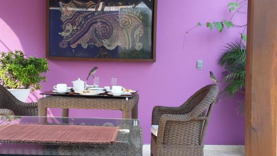 Bilde fra Casa de Isabella - a Kali Hotel