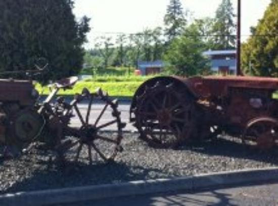 Elma, WA: Some of the Rustry Tractors