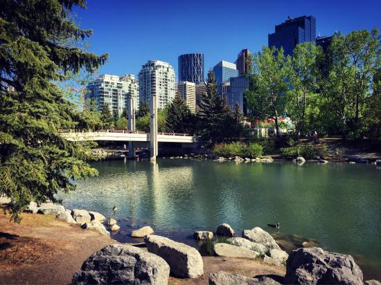 The Westin Calgary: photo1.jpg