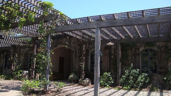 Rutherford, Kalifornia: 春に訪れた時のブドウ棚