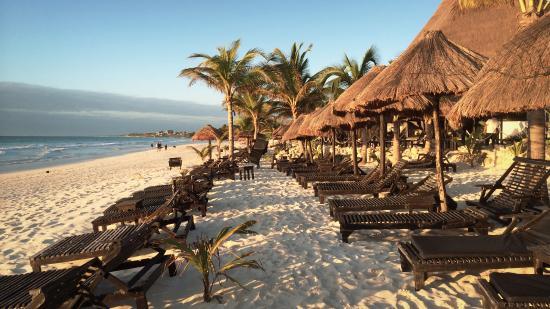 La Vita e Bella: plage aménagée