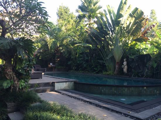 De Munut Balinese Resort: Vus de notre chambre et d'une des piscines.