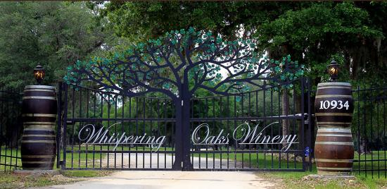Oxford, Flórida: Welcome to Whispering Oaks Winery