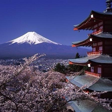 yoshida yakisobaten kaki gunung fuji