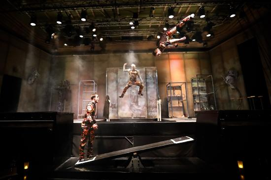 Chamaeleon Theater: ROOTS circus stories