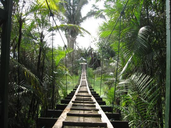 Rio Drake Farm: Suspension bridge to beach