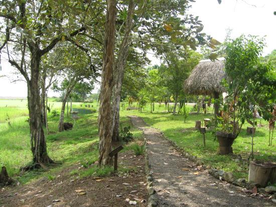 Rio Drake Farm: Start of trail leading to beach