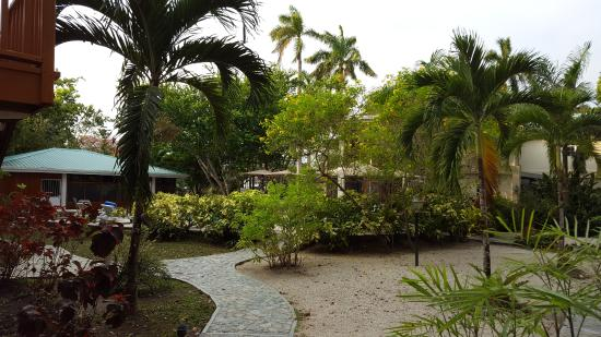 Burrell Boom, Belice: Path to the pool.