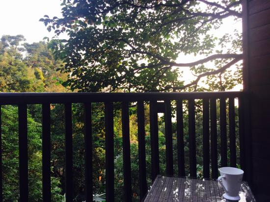 The Tamara Coorg: A view from the balcony
