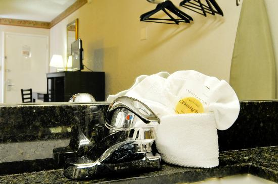 Vagabond Inn Sunnyvale: Sink