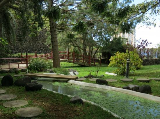 Risco Bello Aquatic Gardens