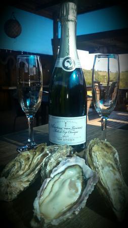 Wilderness, Zuid-Afrika: Oysters R Us