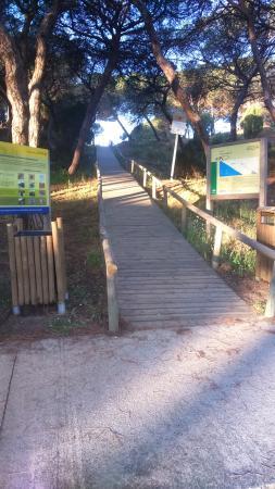 Paraje Natural Enebrales de Punta Umbria